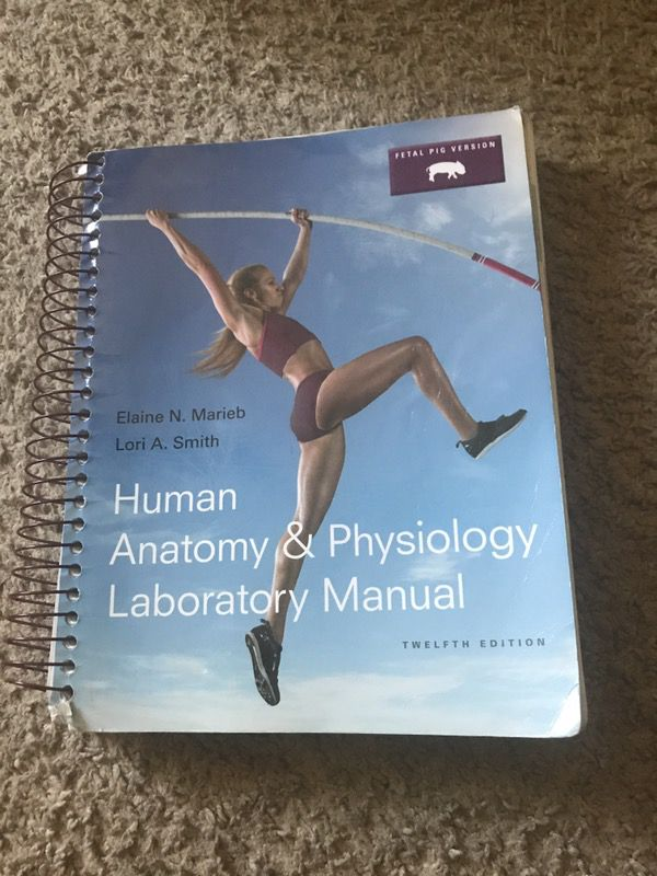 scin 132 human anatomy physioex 9 lab Human anatomy laboratory manual with cat dissections, seventh edition (2014) physioex allows students to repeat labs as often as they like, perform experiments three key lab specimens in pal 30—human cadaver, anatomical models, and histology.