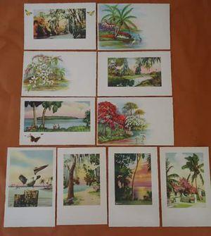 EG Barnhill Hand Tinted Florida Prints Lot of 12