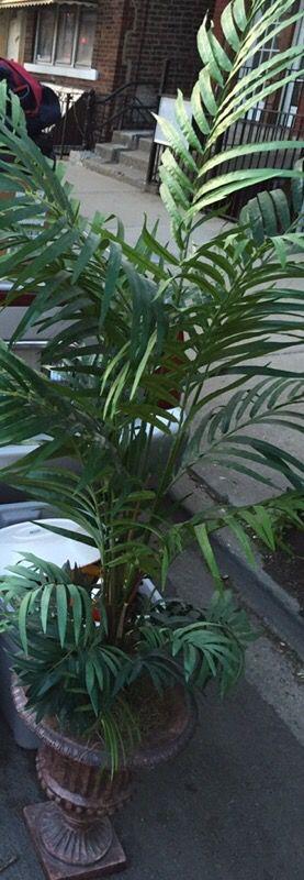 Fake Green House Floor Plant In Decorative Vase Household
