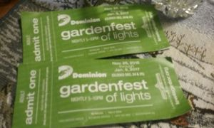 Lewisginter light show tickets