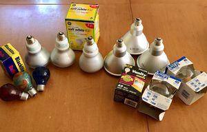 Light Bulb Bundle Pack
