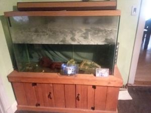 150 gallon fish tank with stand and accessories