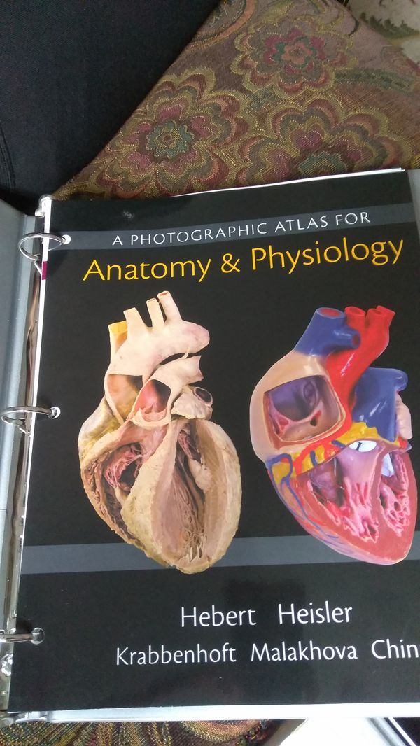 Human biology books (Books & Magazines) in Chicopee, MA - OfferUp