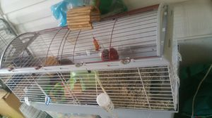 2cage $60 $40