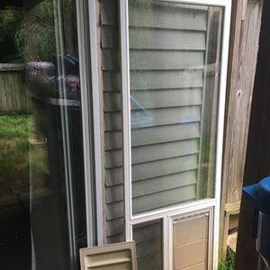 Glass doggy door insert