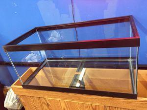 Brand new 40 gallon Breeder Aquarium fish turtle reptile tank $100