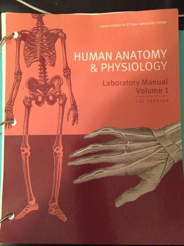 EPCC: Human Anatomy & Physiology Laboratory Manual Volume 1 CAT ...