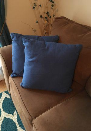 Pillows 17x17