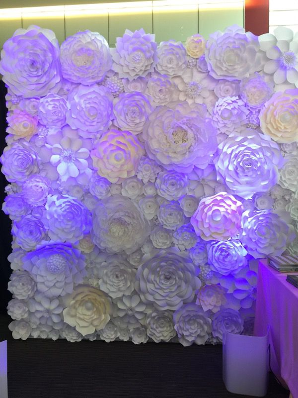 Paper Flower Wall Backdrop Party Wedding Event