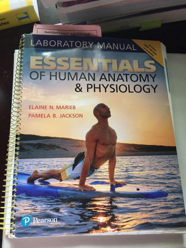 Lab Manual Essentials Of Human Anatomy Physiology 7th Edition