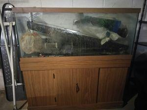 Large wooden Fish Tank