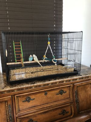 Bird cage for sale! Birds not included