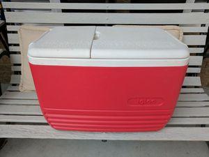 Igloo 52 quart Cooler