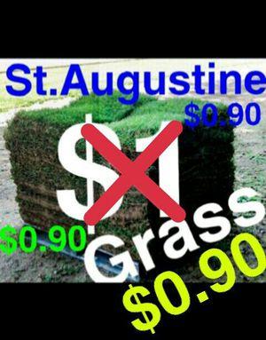 St. Augustine -- $0.90 per square foot