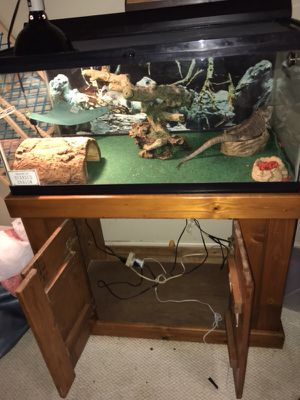 Reptile tank. Breeder size tank solid wood stand