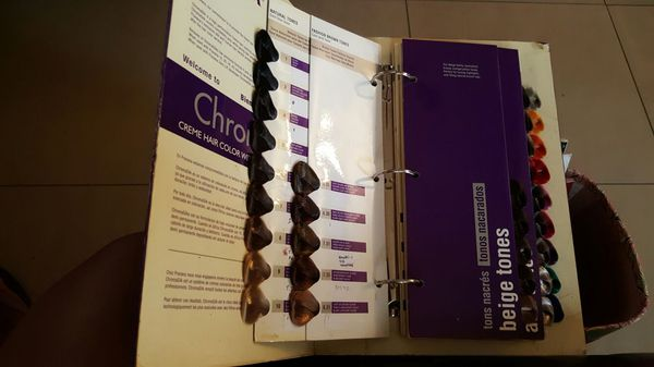 pravana hair color swatch book - Hair Color Swatch Book