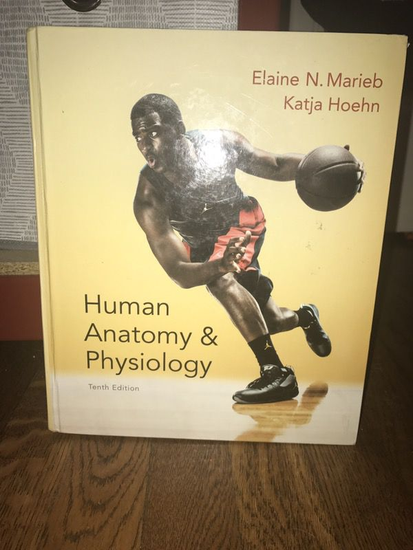 Lujo Human Anatomy And Physiology 10th Edition Audiobook Imágenes ...