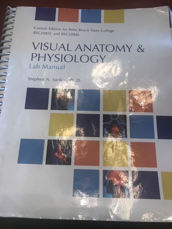 Famous Visual Anatomy And Physiology Lab Manual Collection - Human ...