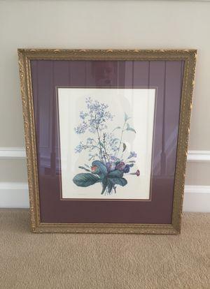 "Botanical custom framed print. High end framing. Measures 18""x21"""
