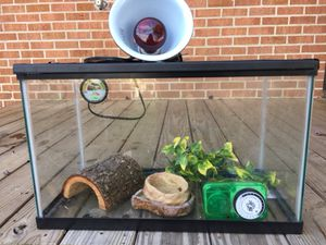 Set up 10 gallon reptile