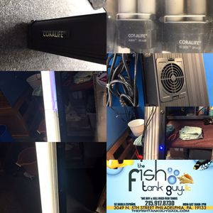 """72"""" Coralife CFL with blue Actinic bulbs and nighttime LED light $50"""