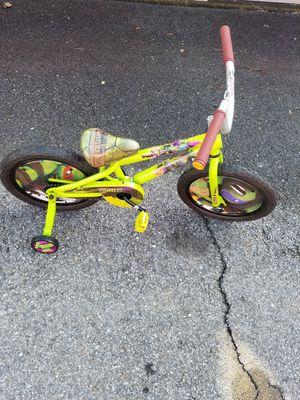 Ninja turtle boys bike
