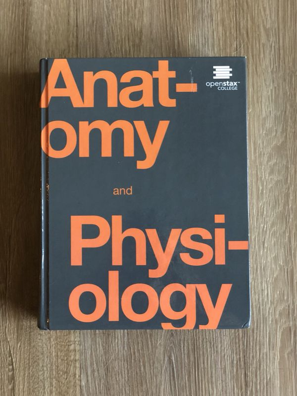 Modern Openstax Anatomy And Physiology Textbook Ensign - Anatomy And ...