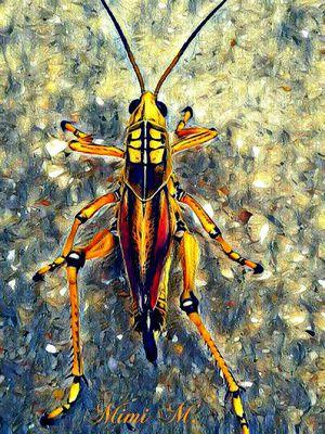 """""""Grasshopper #4"""" art print"""