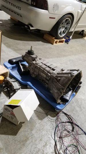 Mustang TR3650 5spd transmission