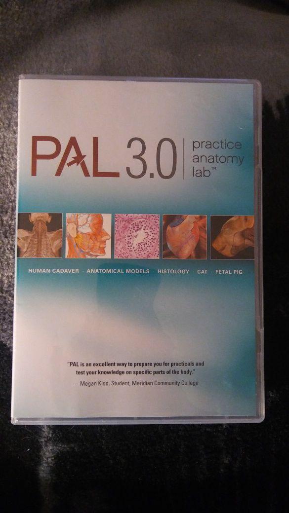 Pal Practice Anatomy Lab Choice Image - human anatomy diagram organs