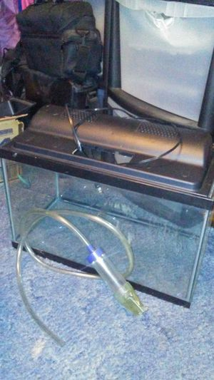 Two 10 gallon fish tanks with tops lights filters