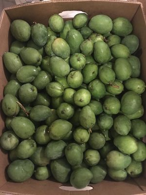 Green Mangoes - Mangos tiernos PRICE FIRM