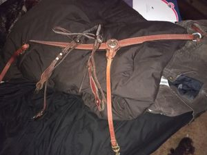 Horse Tack with bridle set and reins
