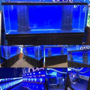 150 gallon REEF READY Aquarium fish tank complete set up $900