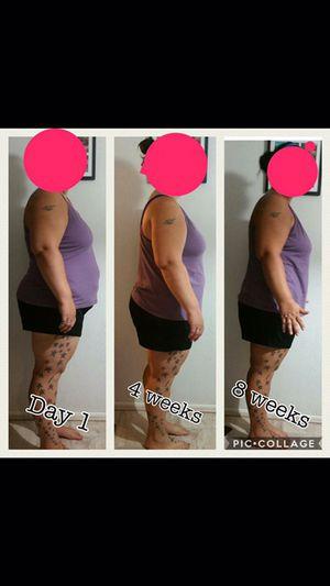 free high protein low fat diet plan