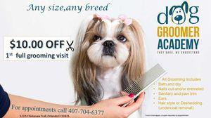 $10.00 off full grooming visit