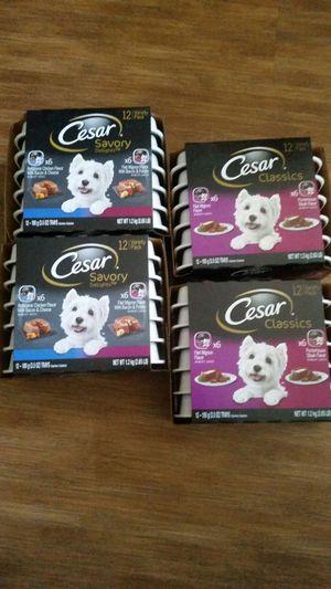 Cesar Savory Delights Variety 12 pack dog food.