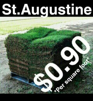 Grass - Sod - everything included