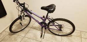 24 Rim Bike Roadmaster