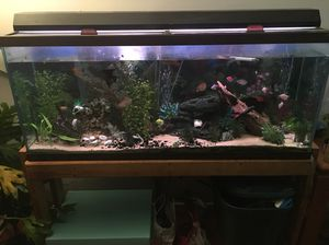 55 Gallon Fish Tank, Light & Stand