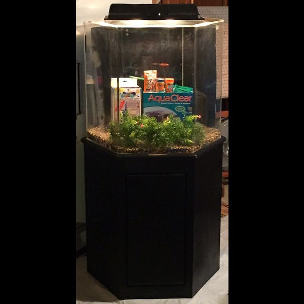 55 gallon hexagon aquarium stand general in des moines wa for Hexagon fish tank with stand