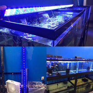 6 foot long LED light for an Aquarium fish tank $100