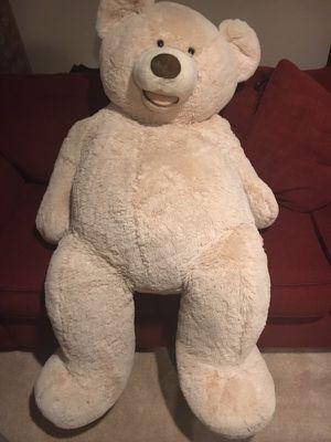 Teddy 🐻 🐻------////////
