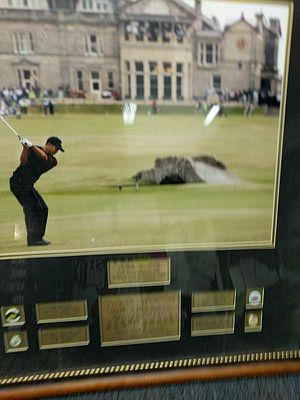 Tiger woods large certificate picture