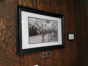 Professional B&W Framed Print
