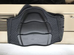 Ducati Dainese Lumbar Protector for $25 or Best Offer