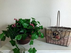 The set a decoration plant and basket 13x7