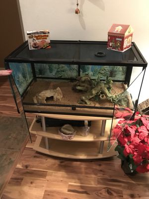 Front Access Reptile Cage and more