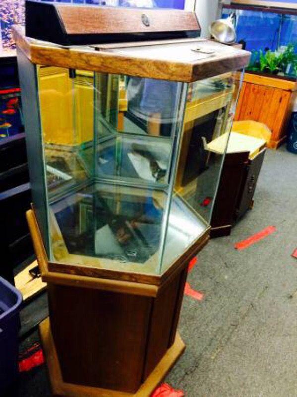 42 gallon oceanic hexagon aquarium fish tank complete pet for Hexagon fish tank
