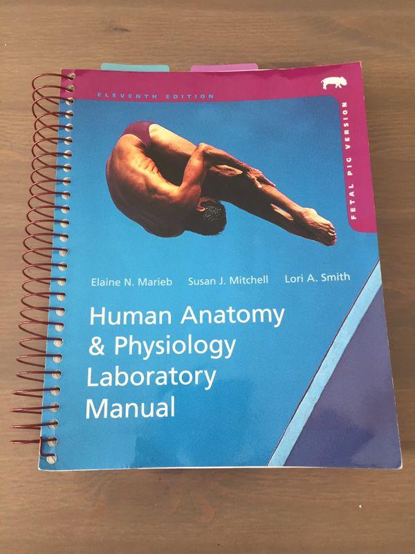 Human Anatomy &a Physiology Lab Manual, (11th, fetal pig edition ...